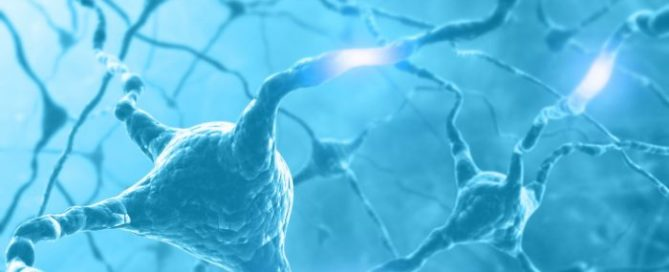 """""""Denervation"""" of autonomous nervous system"""